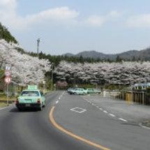 春の交通安全運動と献…