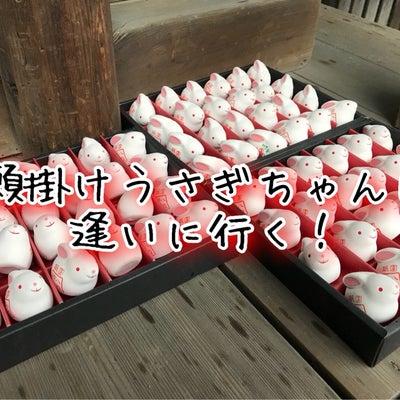 願掛けうさぎで縁結び【開運めぐり】京都八坂神社の大国主社の記事に添付されている画像