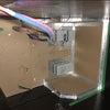 浴室断熱工事と浴槽設置の画像