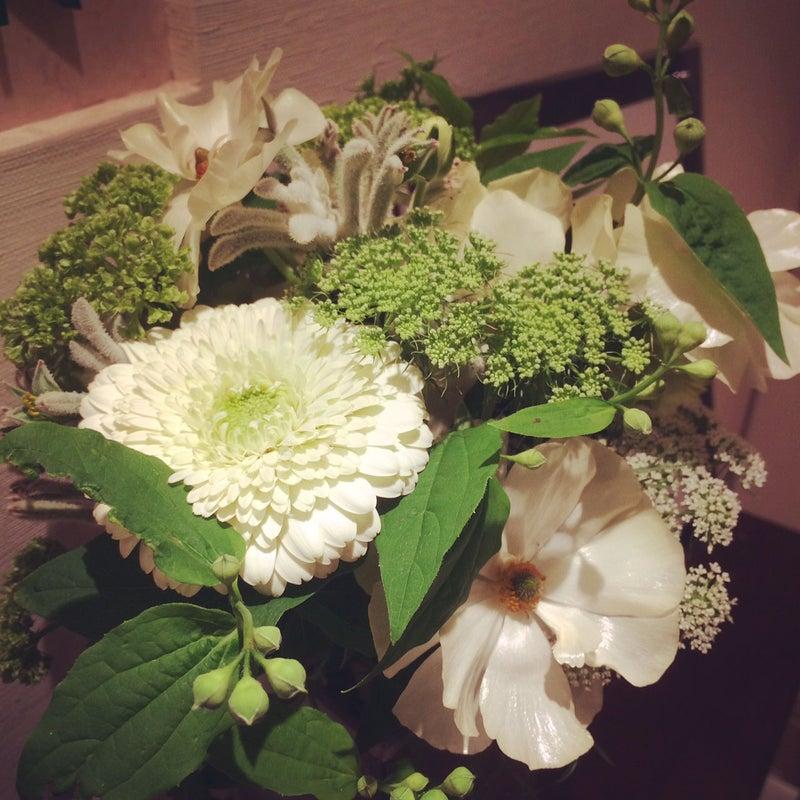 20180413_今日のお花