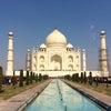 【朝のちょこっと美容情報】インドの女性は◯◯◯で美を高めます♡の画像