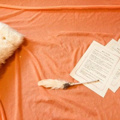 獅子座満月・この人生ドラマの主役「私」の記事に添付されている画像