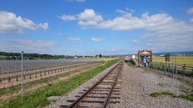 臨)ラベンダー畑駅(富良野線) | ...