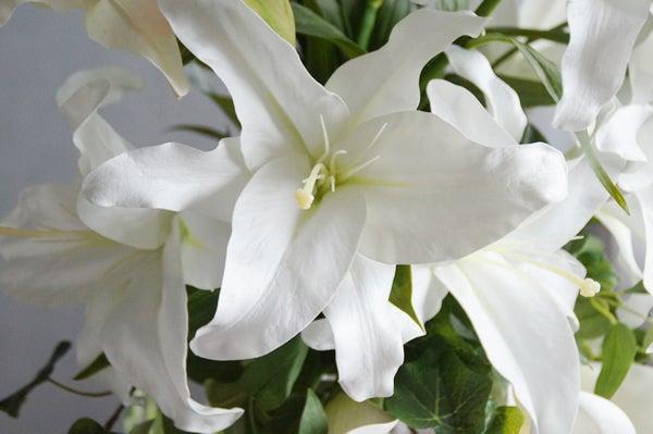 カラー カサブランカ アートフラワー お供え 偲ぶ花