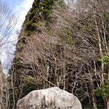森林公園①