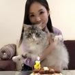 レオ(愛猫)が2歳に…