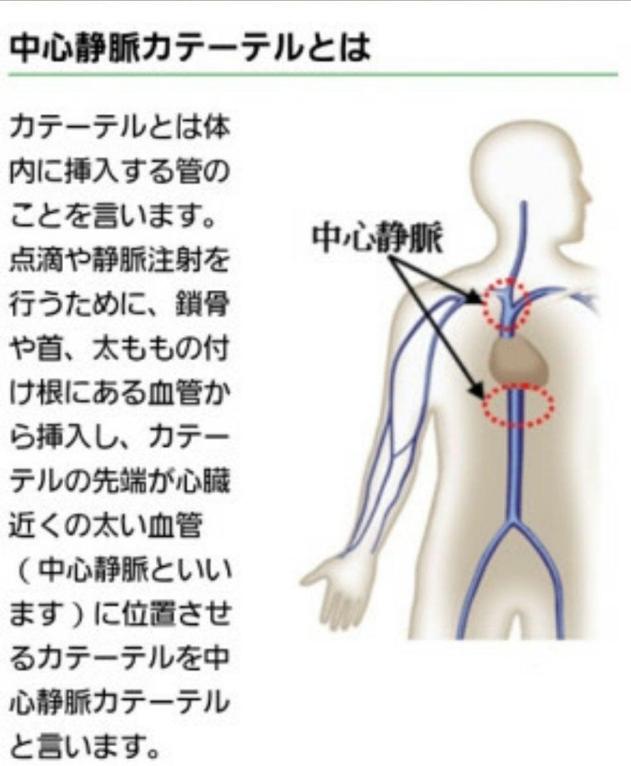 栄養 静脈 在宅 法 中心