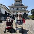 長浜城デート