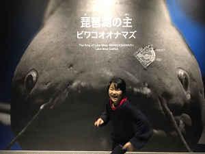 ☆ 琵琶湖博物館 ☆