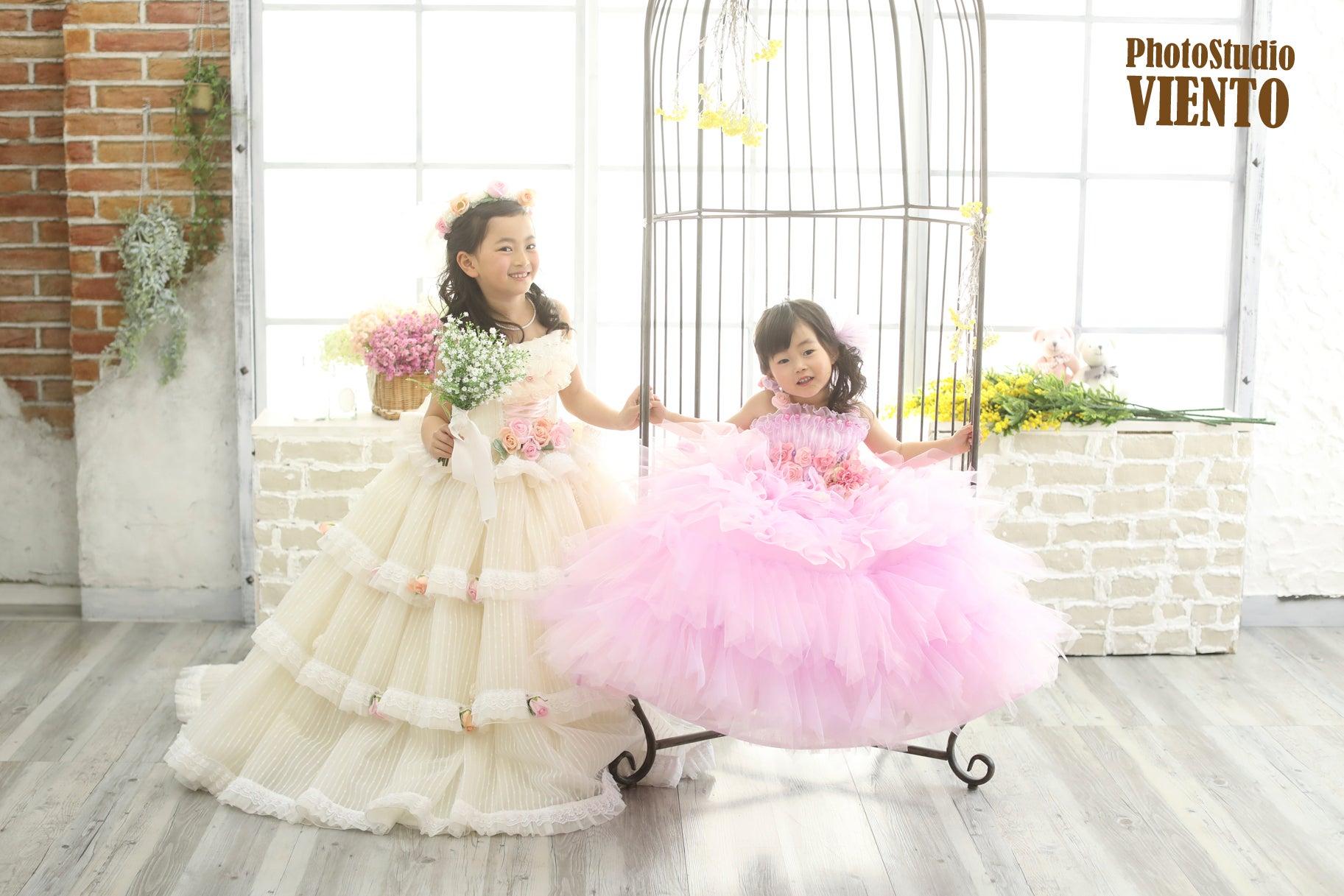 桜フォトストーリー