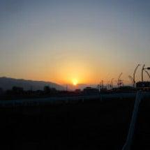 日の出・逆さ富士・鳥…