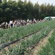 たまねぎ収穫祭&周回…