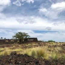 ハワイ島のお気に入り…