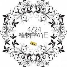 4/24今日は何の日…