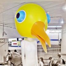 台北駅地下街謎の鳥人…