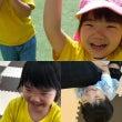 すみれ組(2.3歳児…