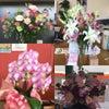 カリタス野市店はお花でいっぱい(^^)の画像