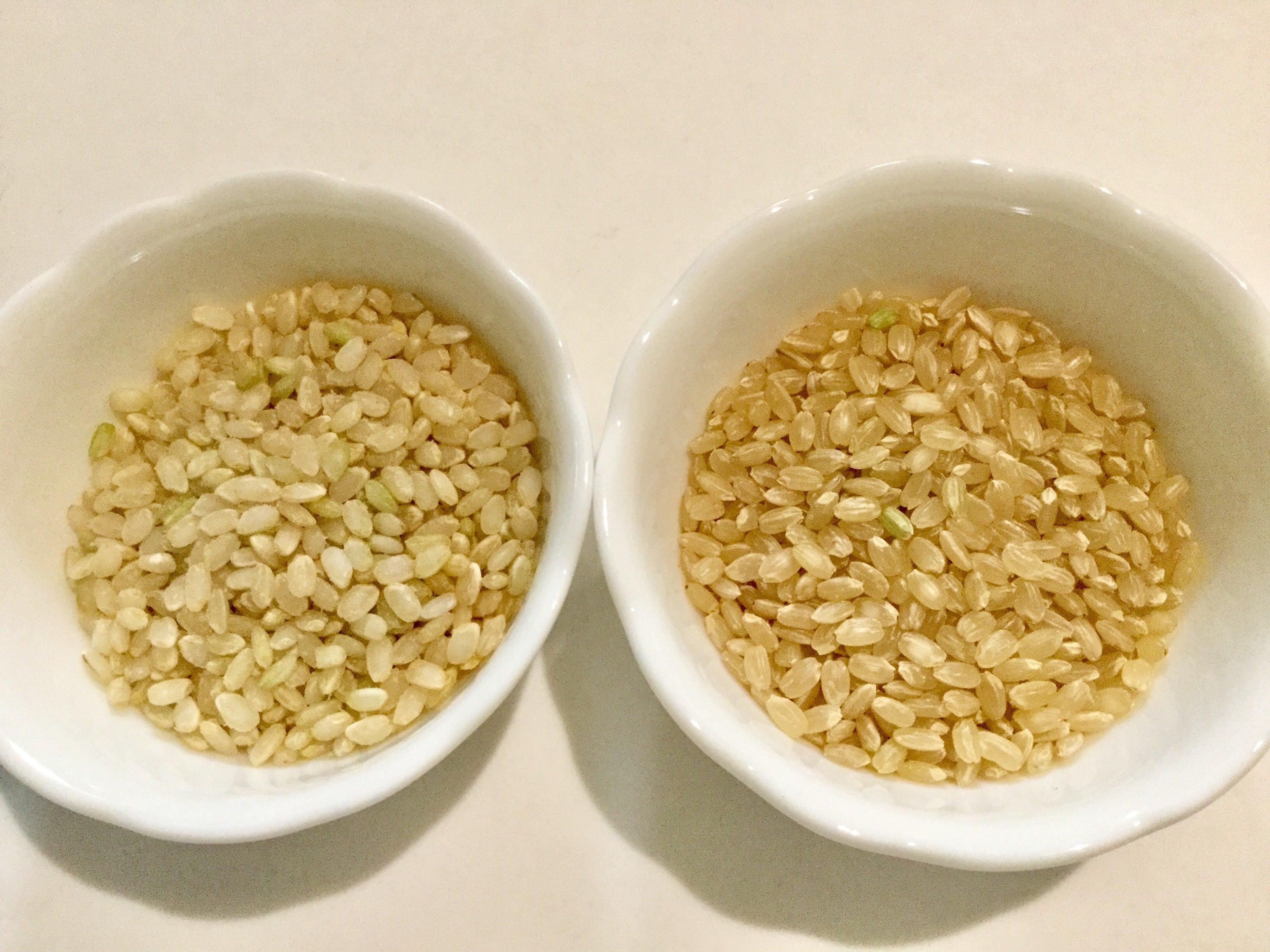 玄米と胚芽米の違いは何ですか?
