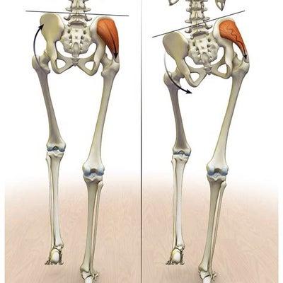 乙女の美脚筋エクササイズ⑤中臀筋(サイドレッグレイズ)の記事に添付されている画像