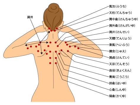 甲骨 しこり 肩 自分でできる肩甲骨はがしストレッチ!肩甲骨ストレッチで肩こりの痛みを解消しよう