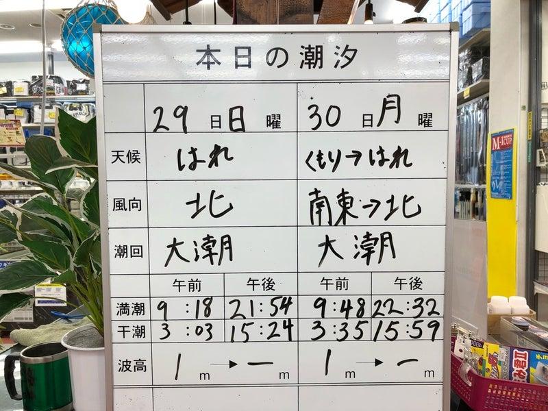 福岡 釣り スポット