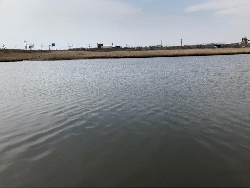 安平川でニジマスとカニ釣り! |...