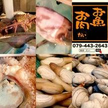お魚とお肉だい……大…