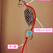 姿勢制御・身体操作法…