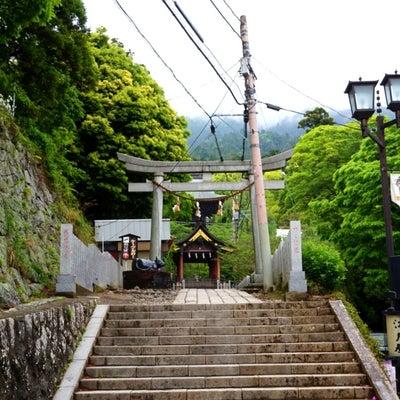 筑波山へ!黄金と白銀の蛙① 〜筑波山神社〜の記事に添付されている画像