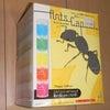 アリの生活を観察する予定の画像