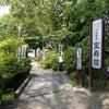 津島神社の隣にある宝寿院もセットでお参り★厄難除けの力★ 愛知県の画像