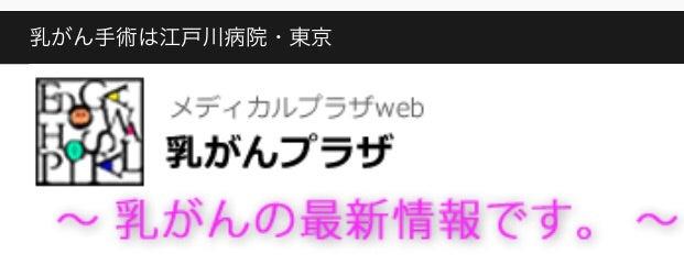 村 ランキング ブログ 乳がん ハンドメイドブログ 人気ブログランキング