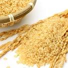 玄米を選択肢に入れるの記事より