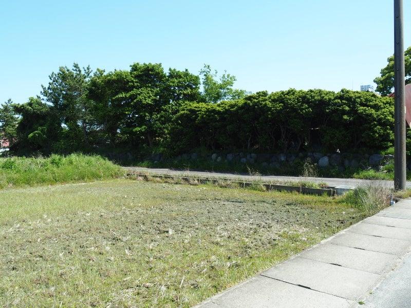 尾張守護所~下津(おりづ)城跡...
