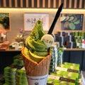 #石垣島旅行の画像