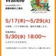 Wailele連休の…