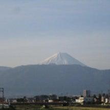 富士山・カモ・猫