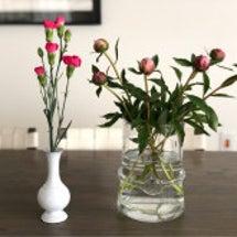 お花と洗濯と