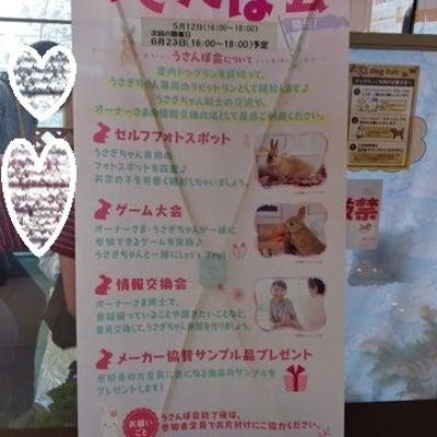 うきうき♪うさんぽ会で頂いたお土産 ☆うさぎ畑さんのにんじんの葉っぱ☆の記事に添付されている画像