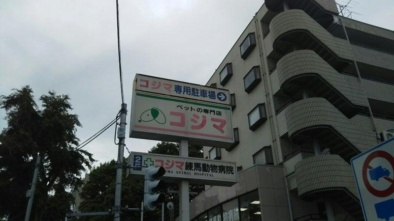 病院 動物 コジマ 練馬
