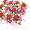 カーネーションの花畑  ミニアレンジの画像