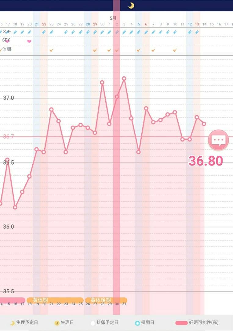 22日目 高温期 信じられないことが起こりました。