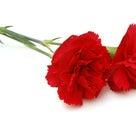 感謝と言う花を咲かせるの記事より