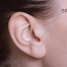 耳のツボ 2⃣ ☆ ツボ情報の記事より