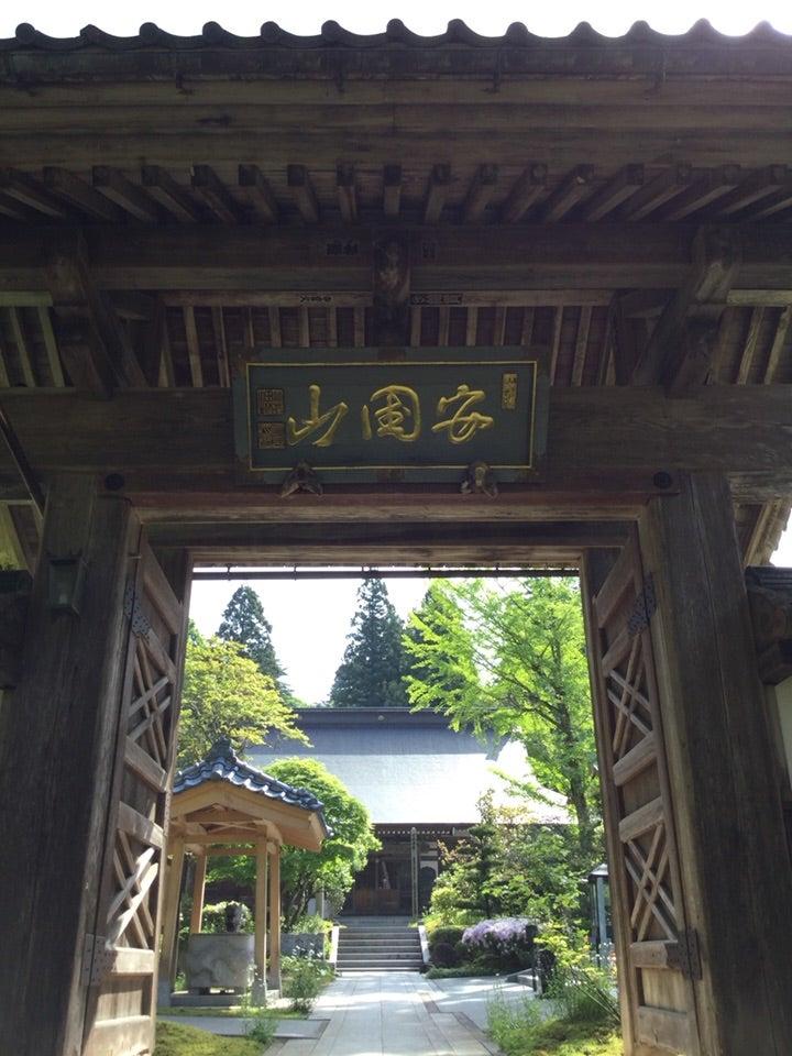 田上町 東龍寺の大杉