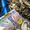 宮城県の和がきさんから、牡蠣をたくさん頂きました。の画像