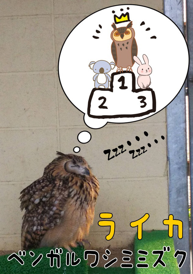 第7回・動物アイドル選抜選挙 結果発表の記事より