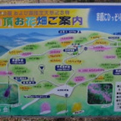 日本武尊を倒した伊吹山の神様とは★山頂はパワースポット!滋賀県の記事に添付されている画像