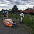 #清洲城の画像