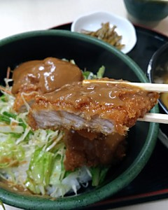 Ichifu18512